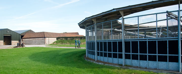 Best facilities for racehorse pre training